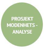 Prosjektmodenhetsanalyse Holte Academy